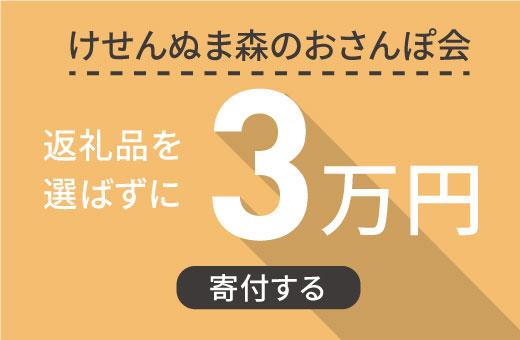 返礼品を選ばずに【けせんぬま森のおさんぽ会】に3万円寄付する