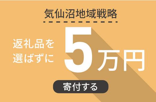 返礼品を選ばずに【気仙沼地域戦略】に5万円寄付する
